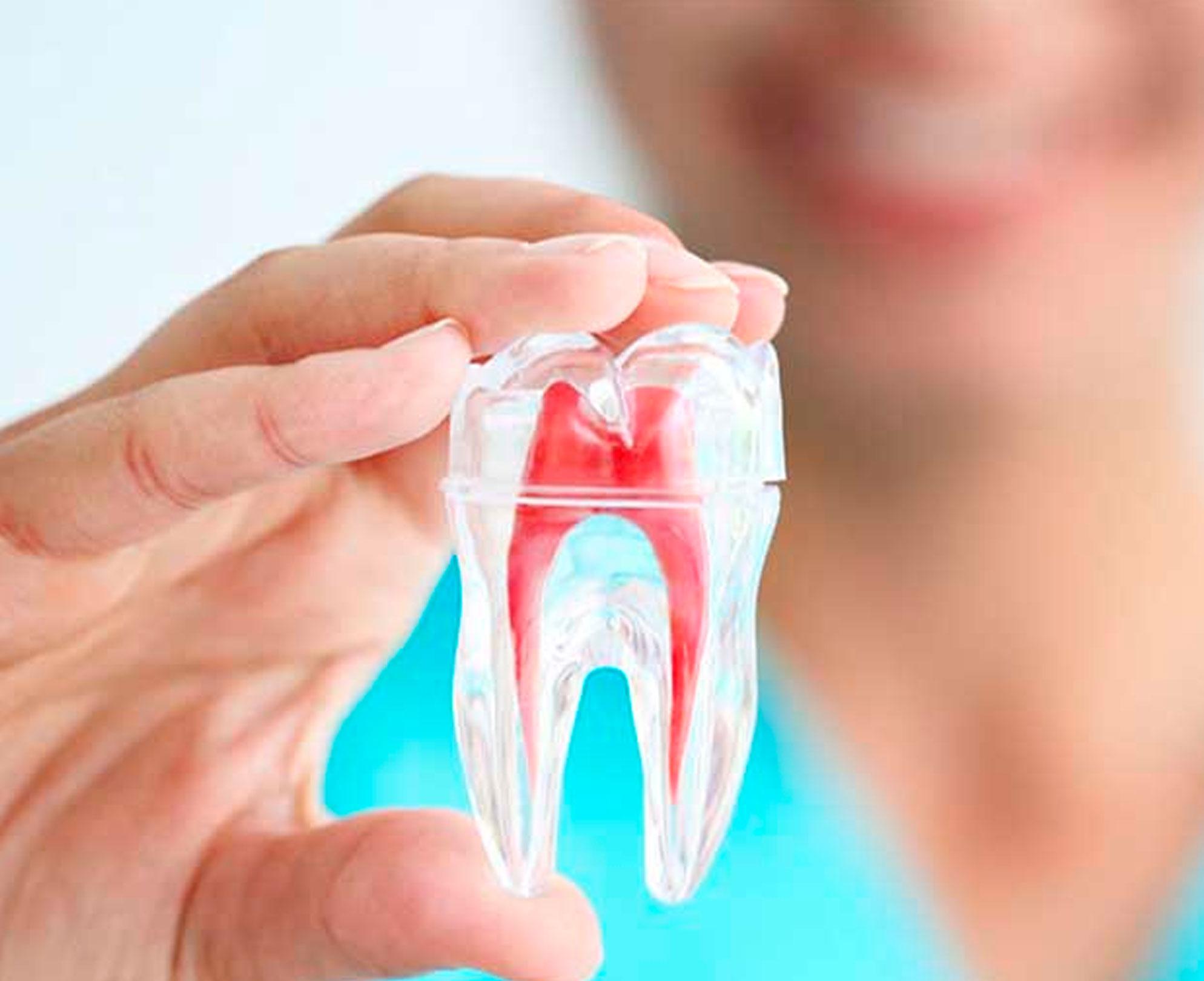 Advanced Bronx Dental